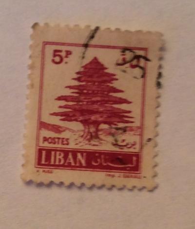 Почтовая марка Ливан (Liban postes) Cedar of Lebanon | Год выпуска 1961 | Код каталога Михеля (Michel) LB 724