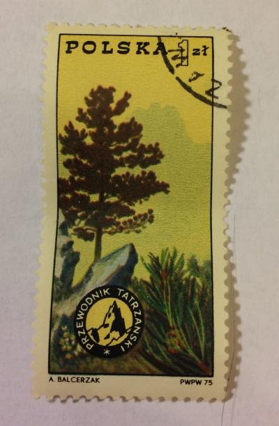 Почтовая марка Польша (Polska) Pine,badge and Tatra Mountains | Год выпуска 1975 | Код каталога Михеля (Michel) PL 2370