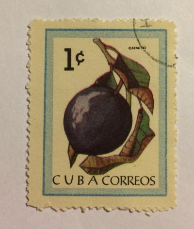 Почтовая марка Куба (Cuba correos) Star apple | Год выпуска 1963 | Код каталога Михеля (Michel) CU 859-2