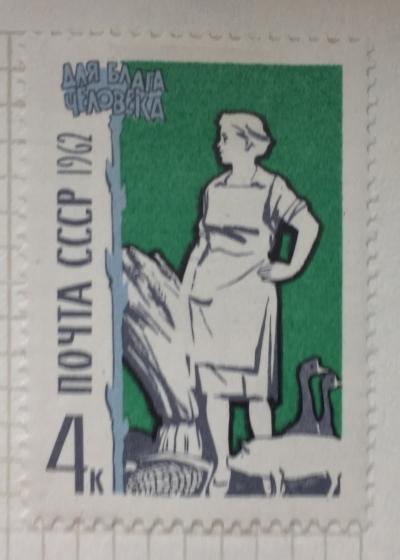 Почтовая марка СССР Сельское хозяйство   Год выпуска 1962   Код по каталогу Загорского 2660