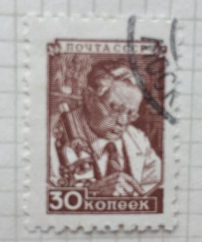 Почтовая марка СССР Ученый | Год выпуска 1949 | Код по каталогу Загорского 1296