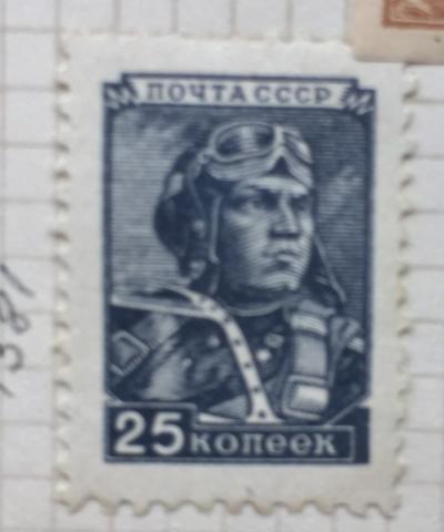 Почтовая марка СССР Летчик   Год выпуска 1949   Код по каталогу Загорского 1295 II