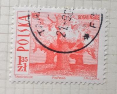 Почтовая марка Польша (Polska) Old oaks, Rogalin | Год выпуска 1966 | Код каталога Михеля (Michel) PL 1711