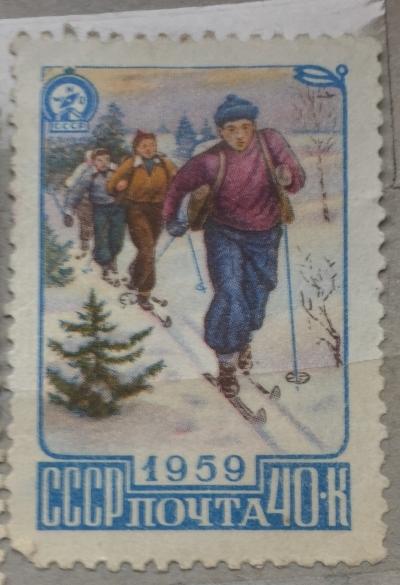 Почтовая марка СССР Лыжники | Год выпуска 1959 | Код по каталогу Загорского 2225