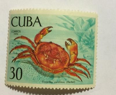 Почтовая марка Куба (Cuba correos) Batwing Coral Crab (Carpilius coralinus)   Год выпуска 1969   Код каталога Михеля (Michel) CU 1470