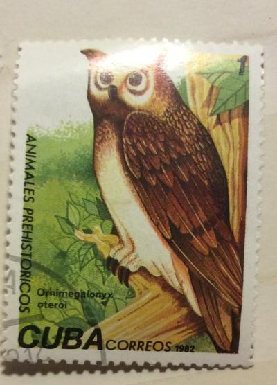 Почтовая марка Куба (Cuba correos) Cuban Giant Owl (Ornimegalonyz oteroi) | Год выпуска 1982 | Код каталога Михеля (Michel) CU 2691