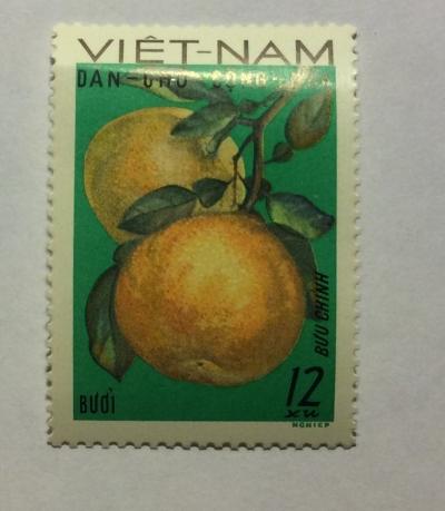 Почтовая марка Вьетнам (Vietnam) Grapefruit (Citrus maxima) | Год выпуска 1969 | Код каталога Михеля (Michel) VN 588