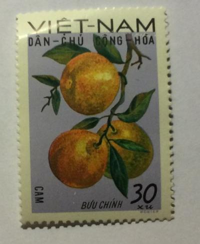 Почтовая марка Вьетнам (Vietnam) Oranges (Citrus sinensis) | Год выпуска 1969 | Код каталога Михеля (Michel) VN 591