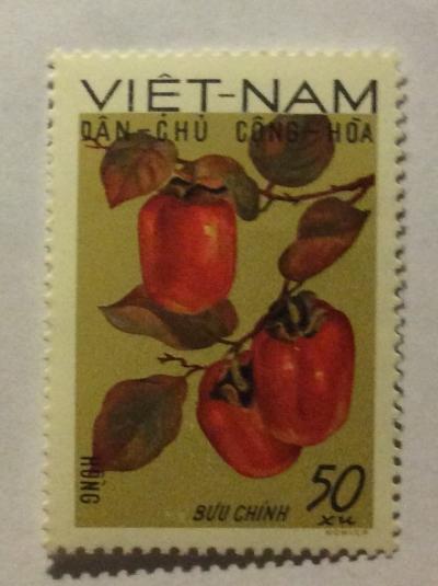 Почтовая марка Вьетнам (Vietnam) Persimmons (Diospyros virginiana) | Год выпуска 1969 | Код каталога Михеля (Michel) VN 593