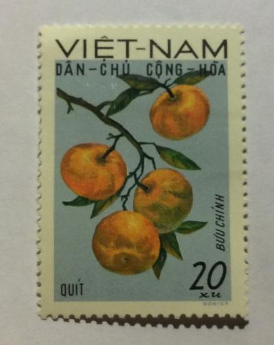 Почтовая марка Вьетнам (Vietnam) Tangerines (Citrus reticulata) | Год выпуска 1969 | Код каталога Михеля (Michel) VN 590