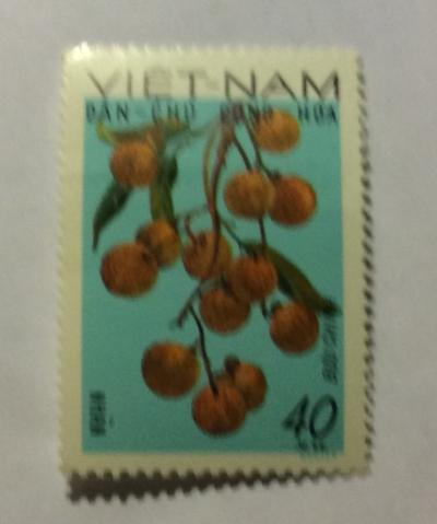 Почтовая марка Вьетнам (Vietnam) Longans (Litchi sinensis) | Год выпуска 1969 | Код каталога Михеля (Michel) VN 592