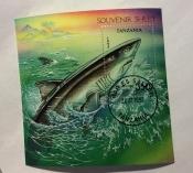 Bluntnose Sixgill Shark (Hexanchus grisens)