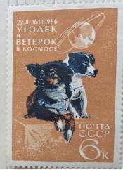 """Собаки Уголек и Ветерок, находившиеся на борту ИО """"Космос-110"""""""