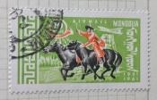 Postman on Horse (Equus ferus caballus)