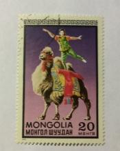Acrobat on camel