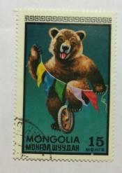 Bear on wheel